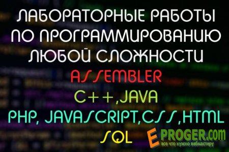 Выполню лабораторную работу любой сложности по программированию